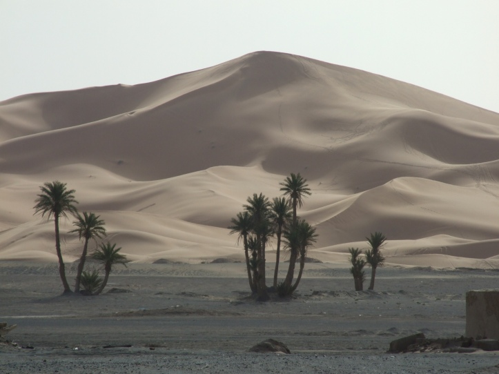 Marroc2007 833