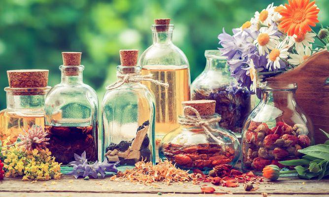 plantas-medicinales-668x400x80xX-1