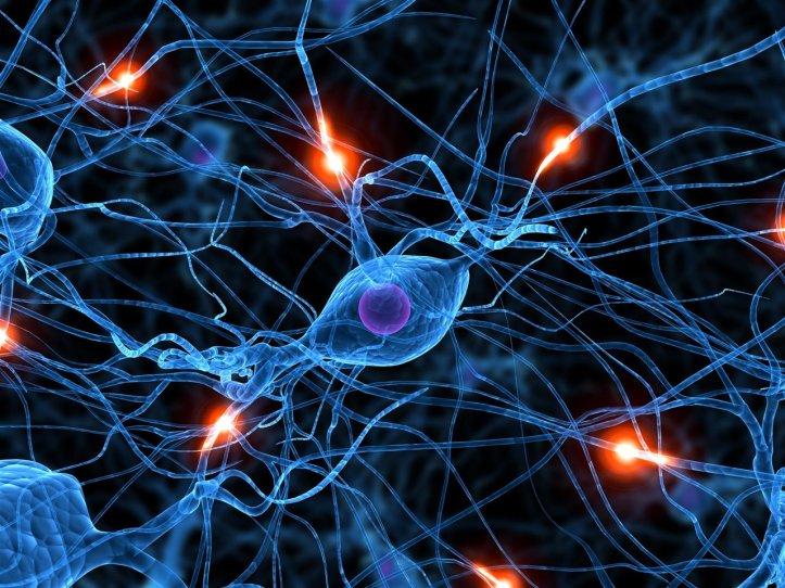 la-quimica-es-la-clave-de-la-comunicacion-neuronal_59283341_1280x960